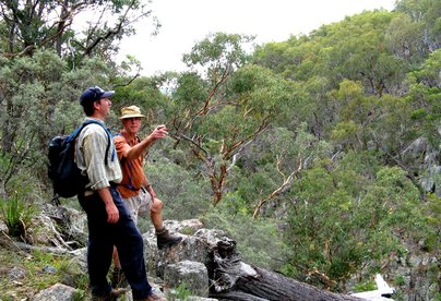 Bushwalkers at Milani Trout Cottages