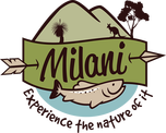 Milani logo experience the nature of it
